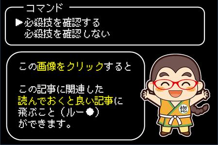 武闘家必殺技